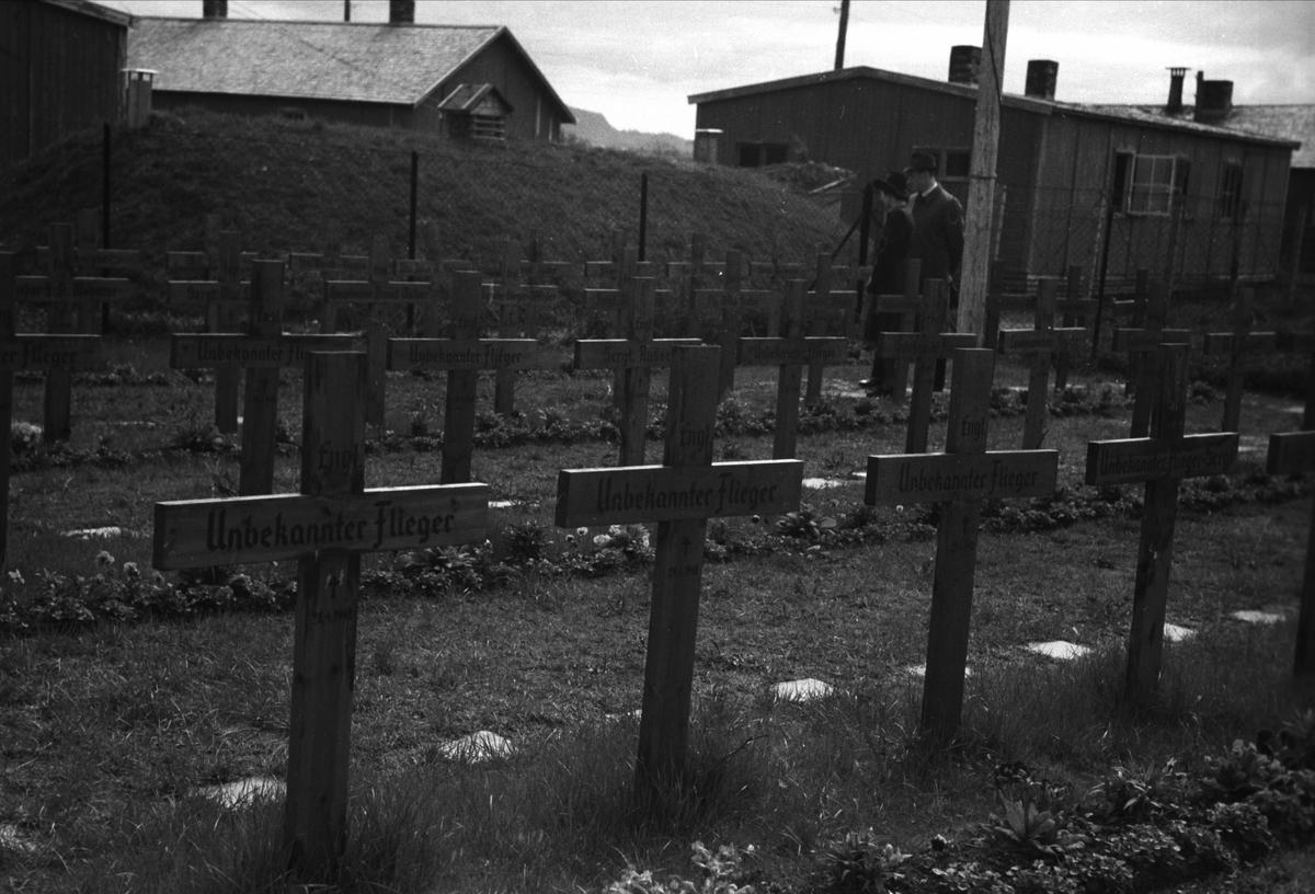 Engelske graver på Stavne