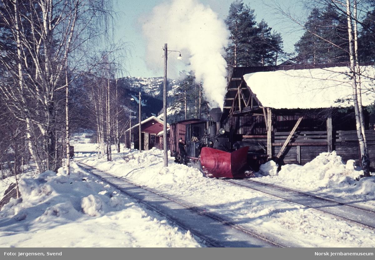 Damplokomotiv nr. 5 skifter på pakkhussporet på Byglandsfjord stasjon