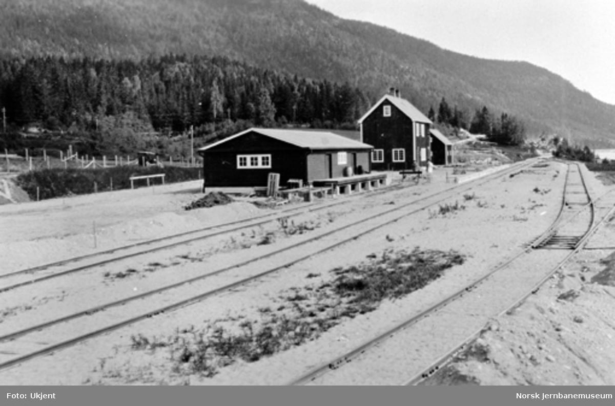 Sperillen stasjon med godshus og stasjonsbygning