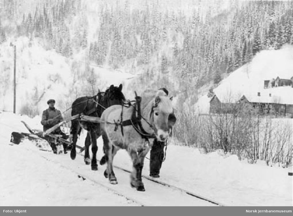 Linjeutbedring ved Reppe, brøyting av linjen med to hester
