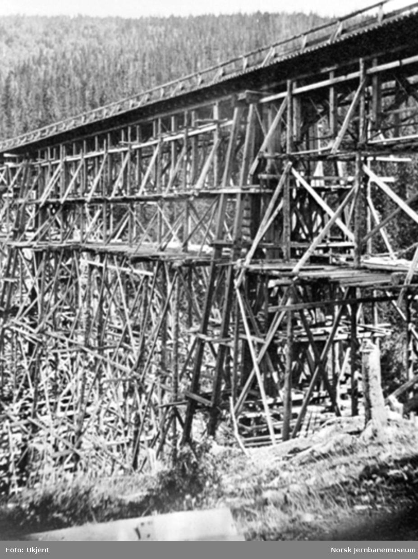 Drøia viadukt, detaljfoto av noe av trekonstruksjonen