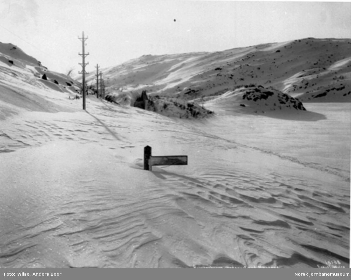 Snøblokade; Bergensbanen nedsnødd ved Nygård