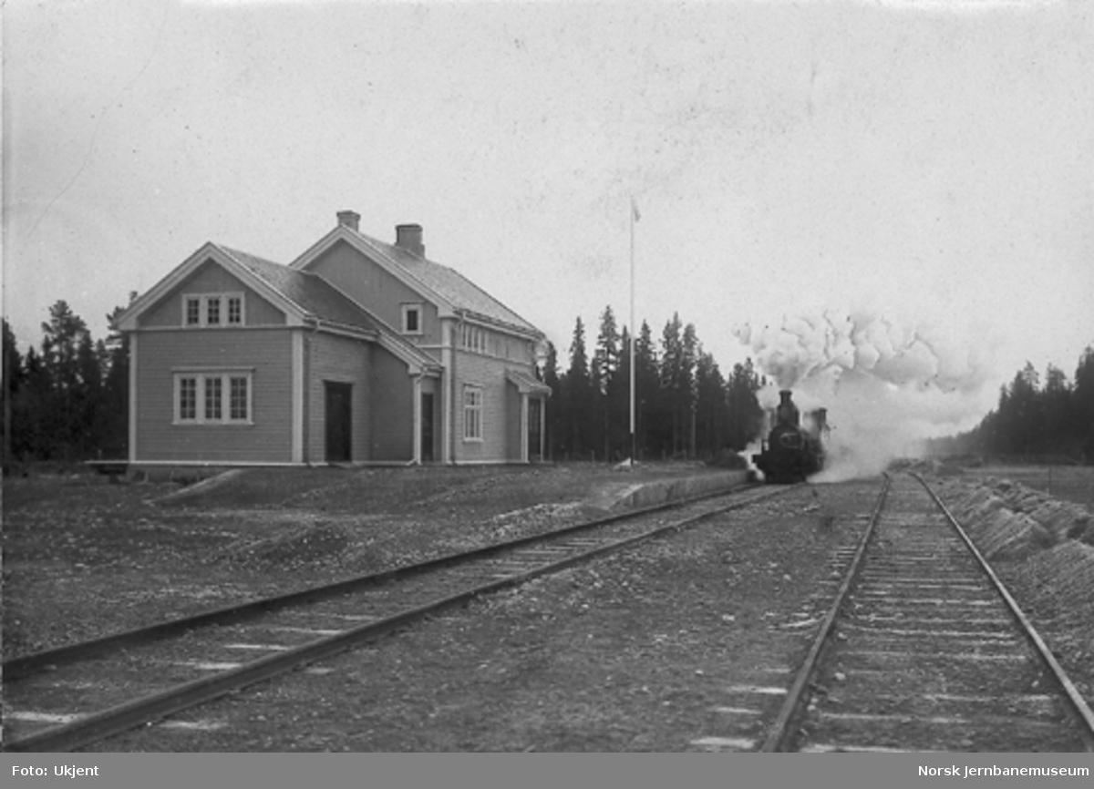 Haslemo stasjon med passerende tog trolig kort tid før banens åpning