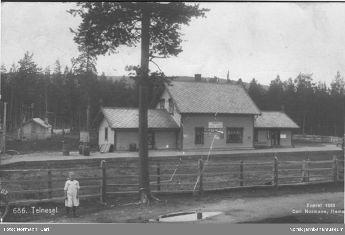 Telneset stasjon