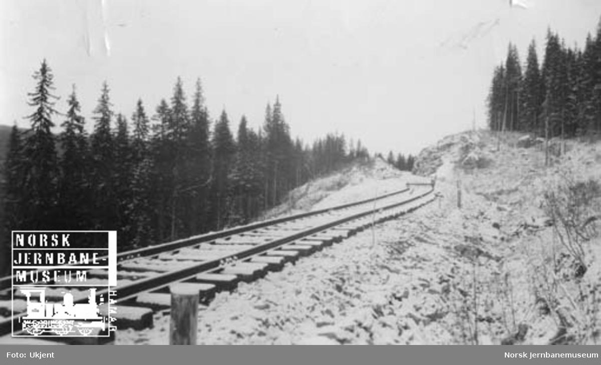 Nylagt skinnegang mot skinnetipp ved Sunnan-Grongbanens 3. avdeling, ca 2 km nord for Snåsa