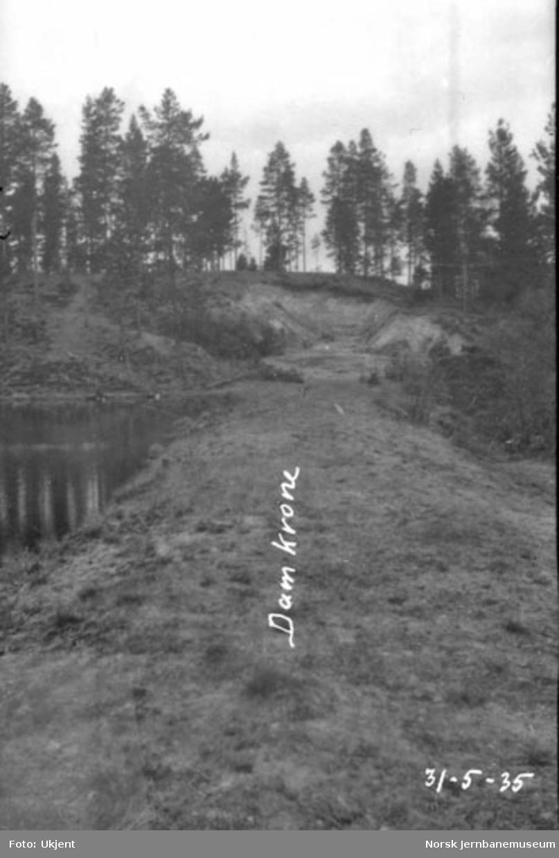 Røsten dam, damkrone