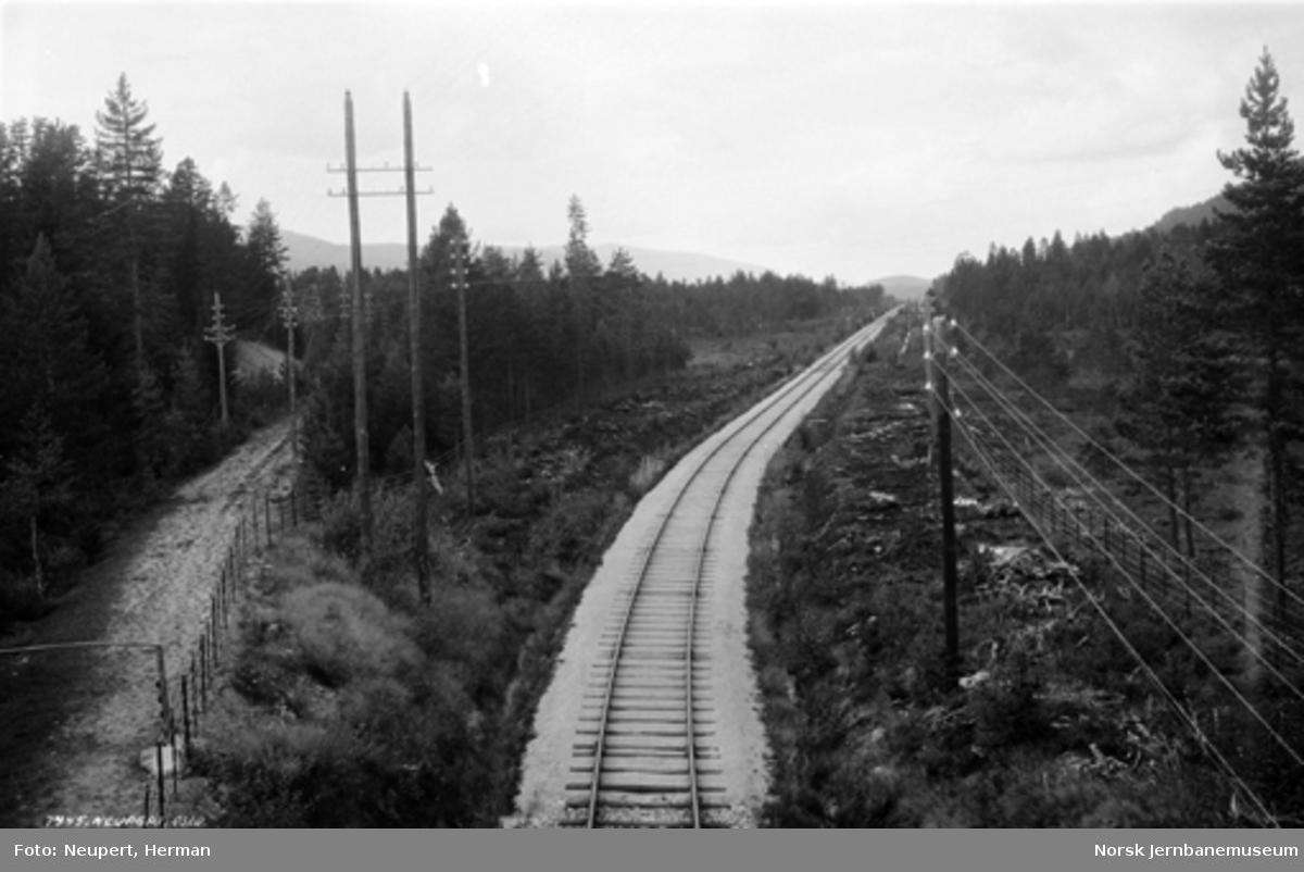 Parti fra Numedalsbanen med rettstrekningen over Aslefetmyrene nord for Flesberg stasjon