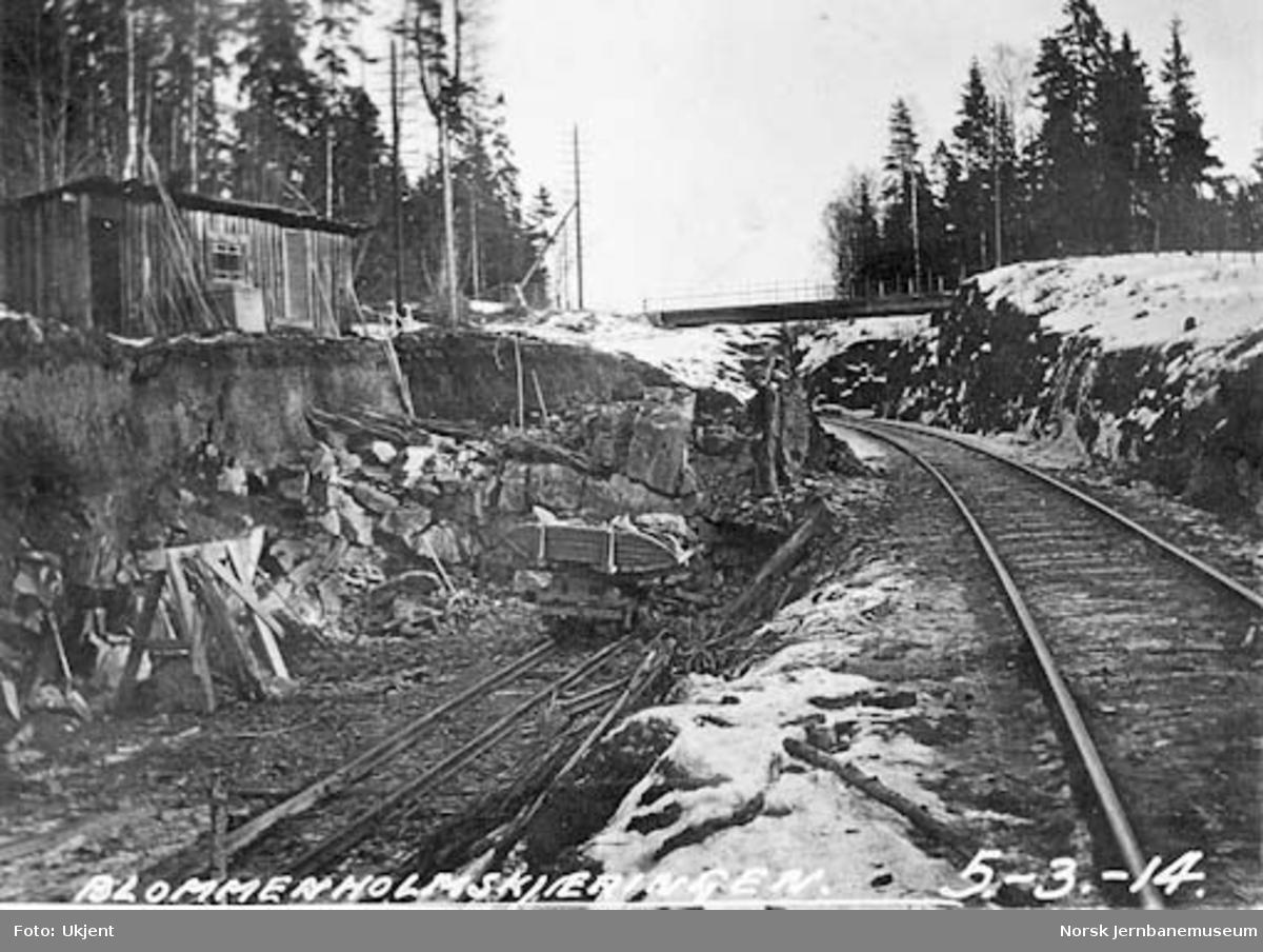 Drammenbanens omlegging : Blommeholmskjæringen