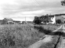 Gårder med boliger og låver Neiden, 1968.