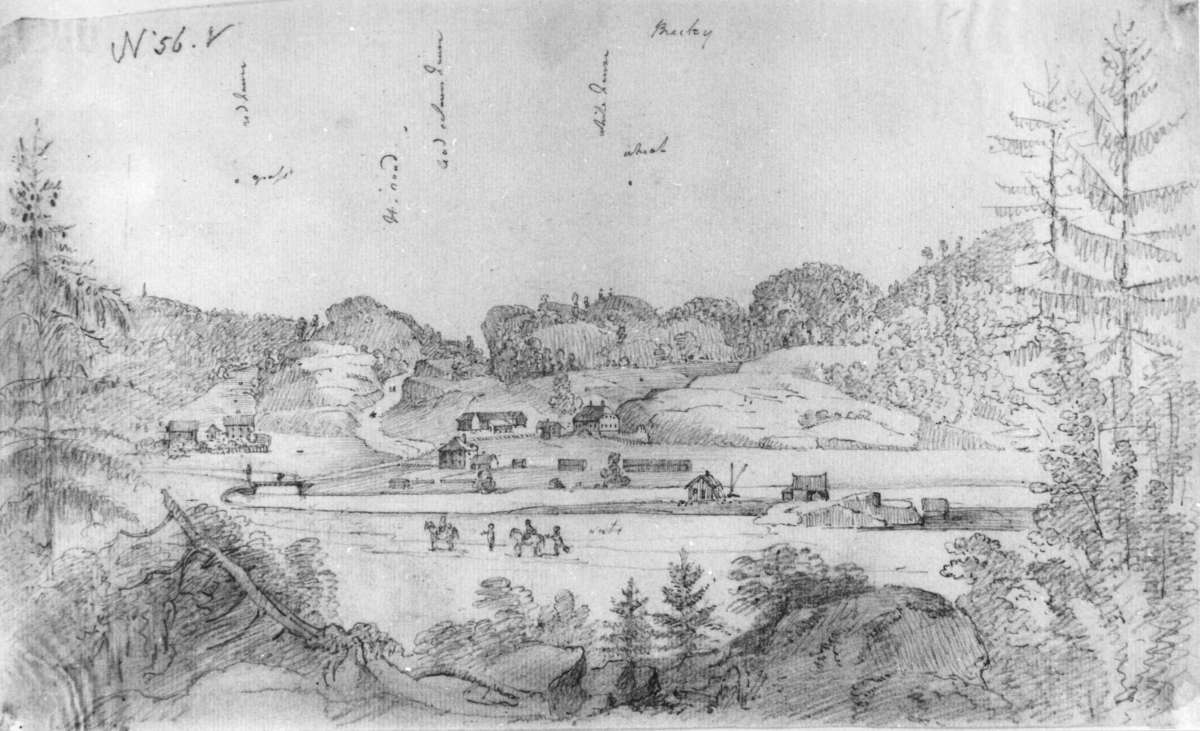 Bamble