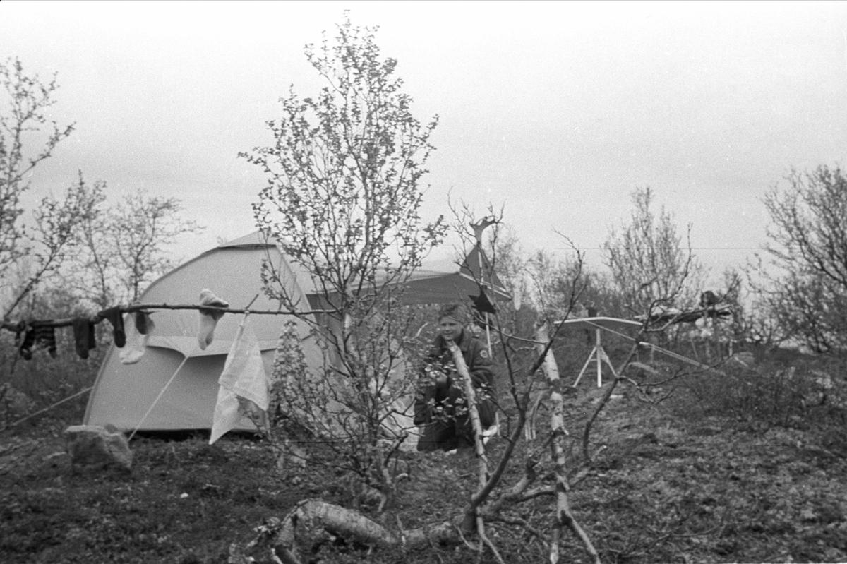 Fiske på Finnmarksvidda. Leir med telt.