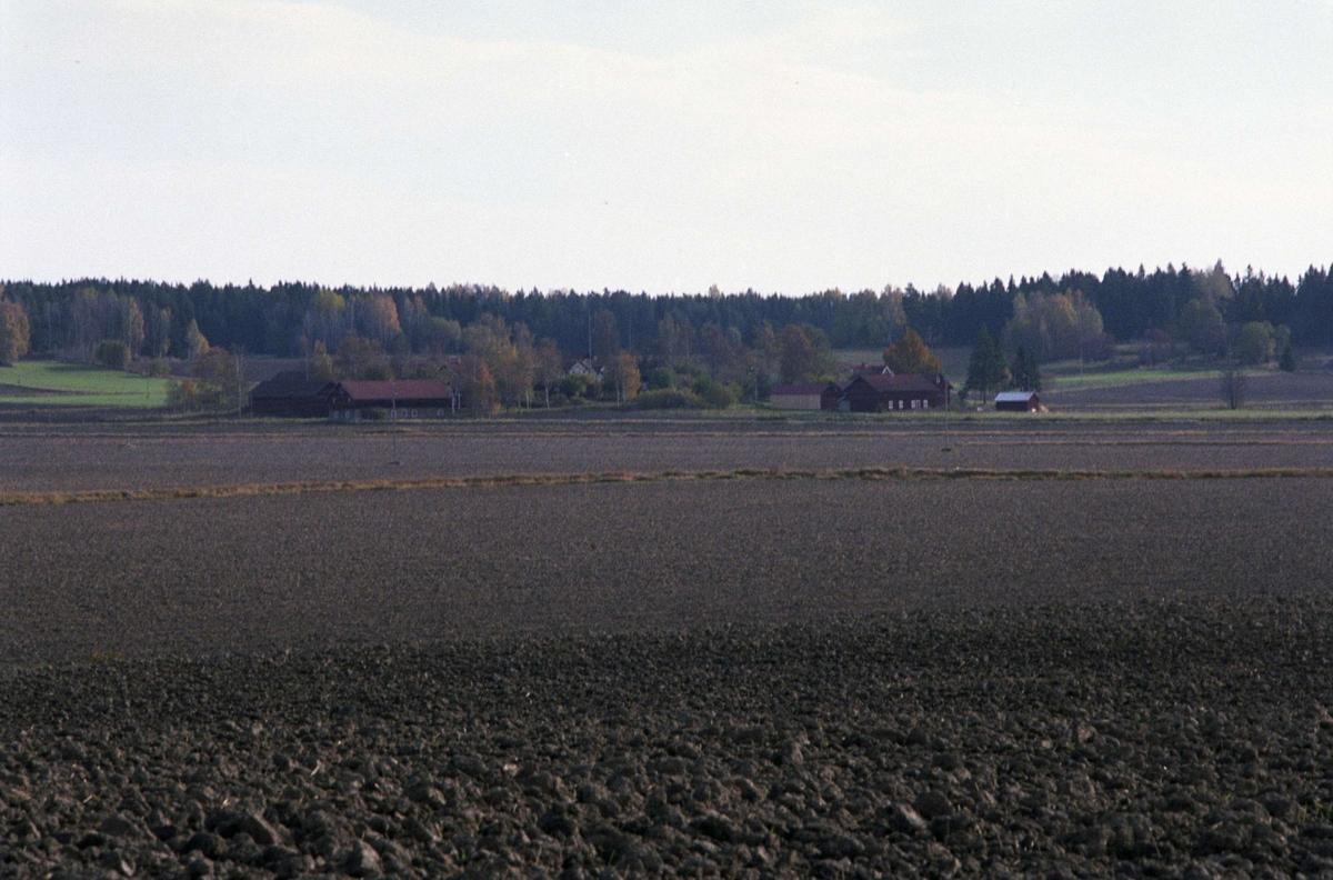 Landskapsvy med Sävasta, Altuna socken, Uppland 1988