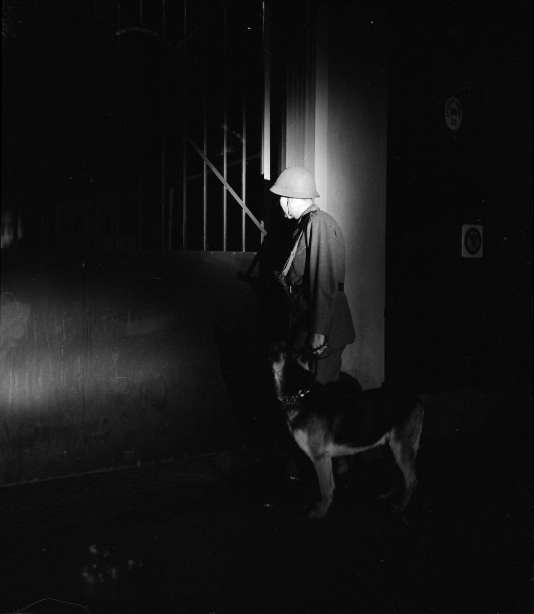 Nattvakt med hund vid Uppsala Bayerska Bryggeri, kvarteret Sandbacken, Dragarbrunn, Uppsala