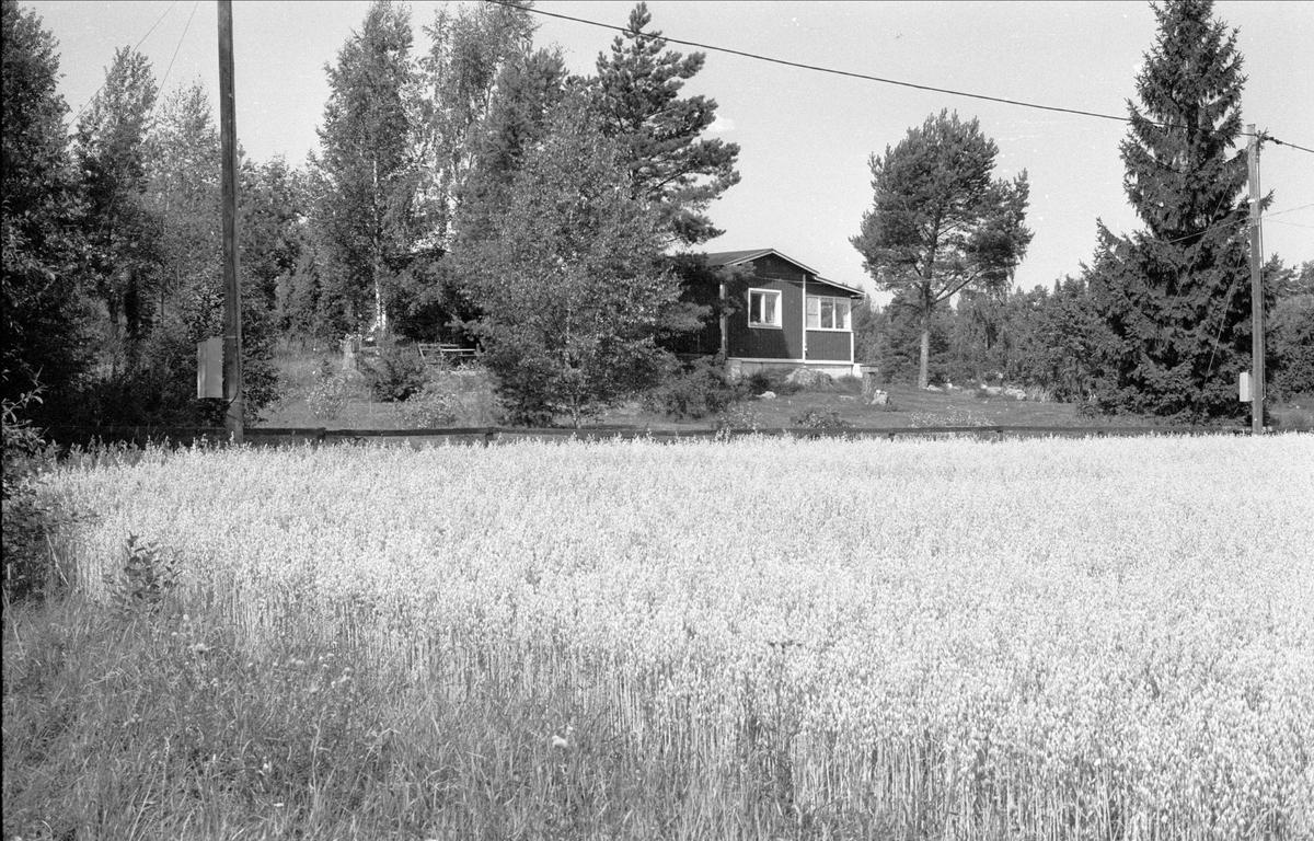 Fritidshus, Alsta 10:1, Börje socken, Uppland 1983