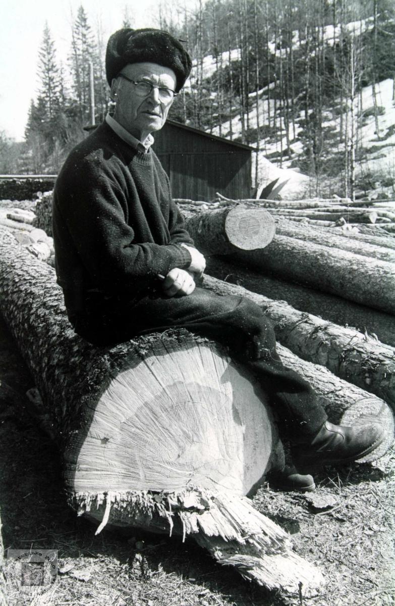 Tømmert er kjørt fram til saga. Torje Flottorp tar en velfortjent hvil.