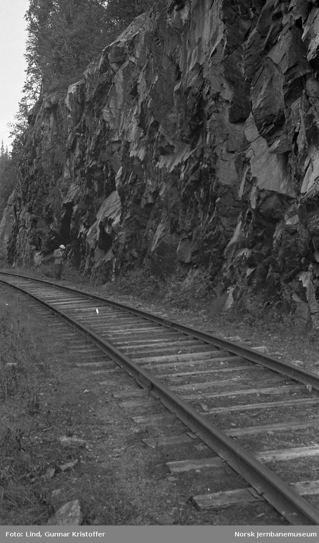 Dunderlandsbanens ombygging : skjæring med framtidig påslag for Trolldalen tunnel syd