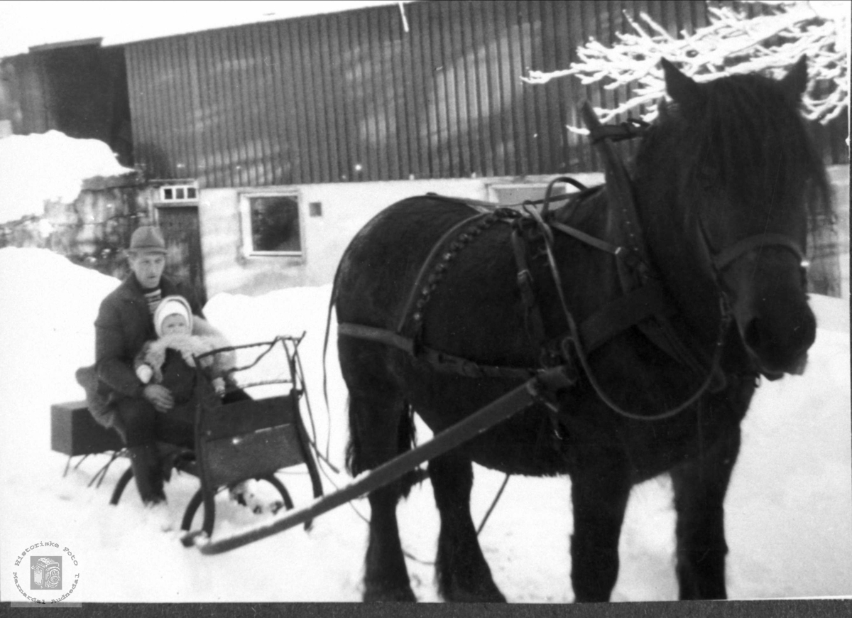 Ola og Tore Foss med hest og spisslede på Foss i Bjelland.