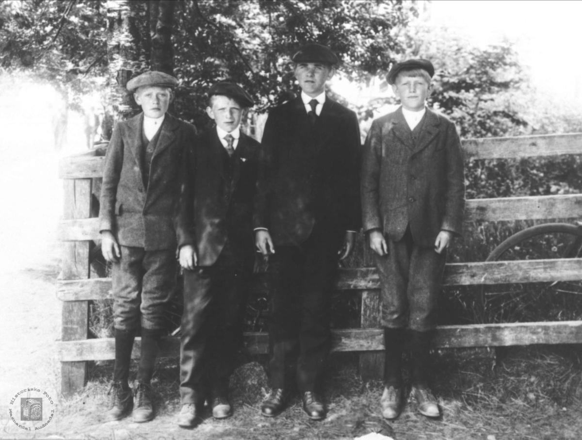 Konfirmantkamerater 1919, Øyslebø.