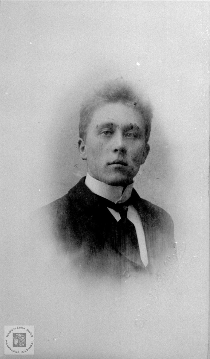 Portrett av Osmund Skjævesland, Øyslebø.
