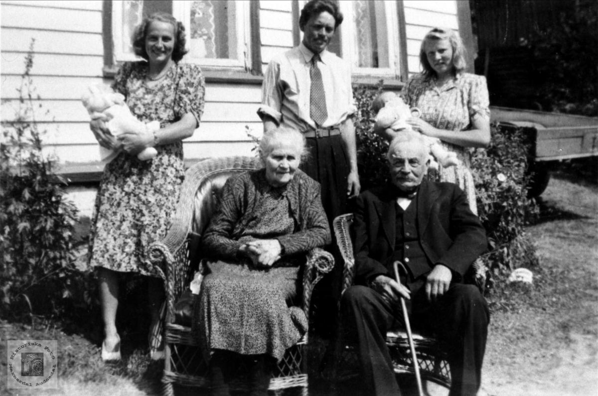 Familiegruppe Vigemyr Brunvatne, Øyslebø.