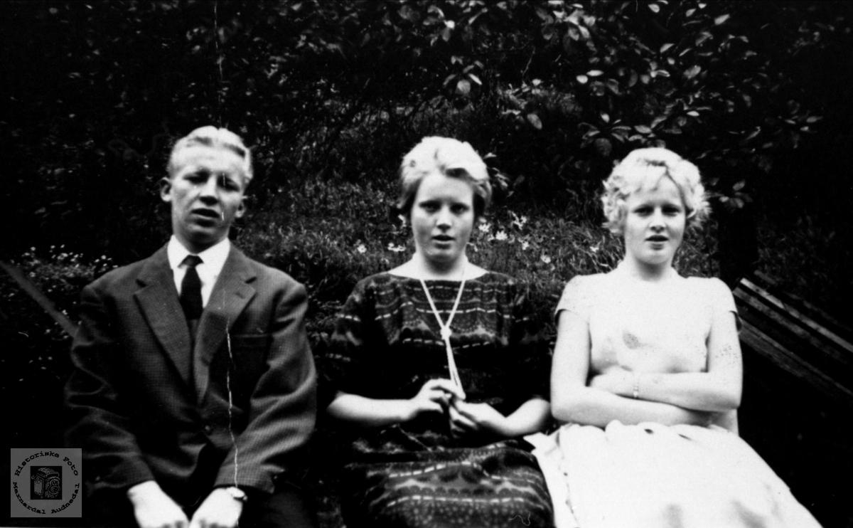 Familiegruppe Kolstad, Øyslebø.
