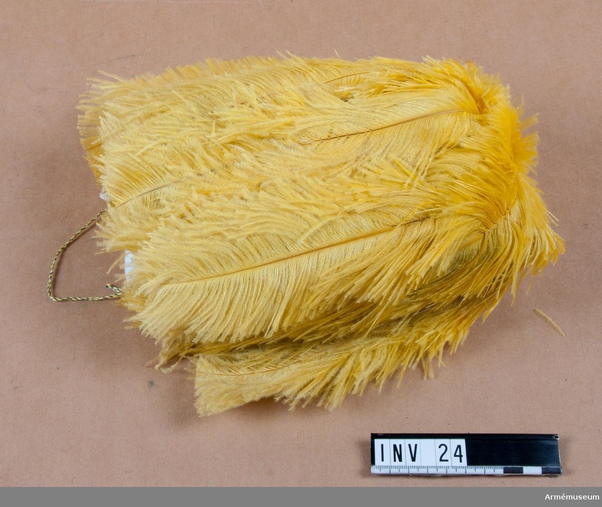 Samhörande nr till gåvan är 1-119 (18-27).Plym m/1845 t bicorne, general, generalitetet.Till trekantig hatt m/1854-59 med tillhörande ask. Hängande gula strutsfjädrar ooch blå strutsfjädrar. De gula täckande de blå. Snedskuren. Anordning för fasthäktning på bicorne m/1854-59, tillverkad av mässing, tvinnad. Upptill lindad med remsa av svart vaxduk.Har tillhört Gustav VI Adolf (1882-1973).