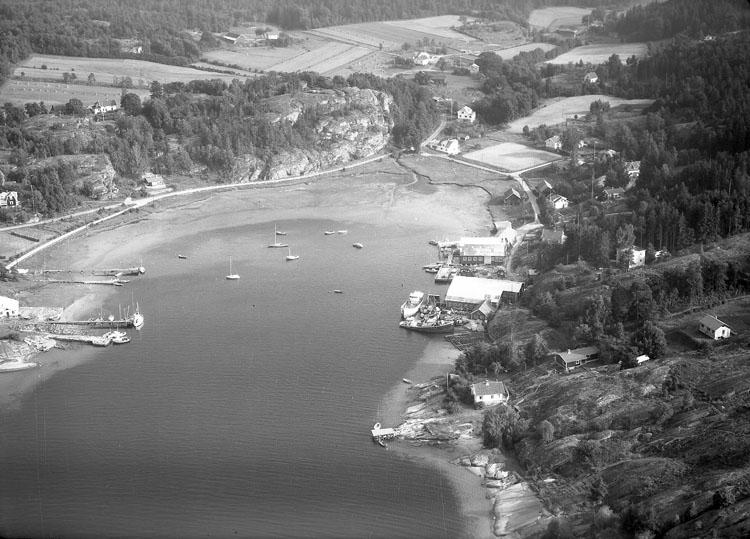 Kungsviken 1960