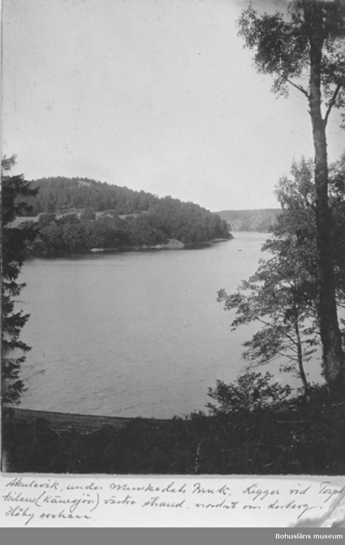 """Text till Kortet: """"Skuleviken under Munkedals Bruk. Ligger vid Torpskilen (Kärnsjön) västra strand. Nordost om Lerberg i Håby socken"""""""