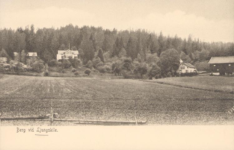 """Tryckt text på kortet: """"Berg vid Ljungskile"""". ::"""