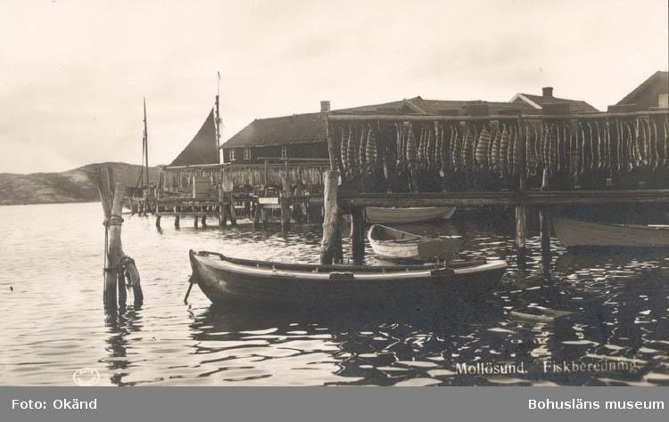 """Tryckt text på kortet: """"Mollösund. Fiskberedning."""" """"Förlag Alrik Hedlund Göteborg."""""""