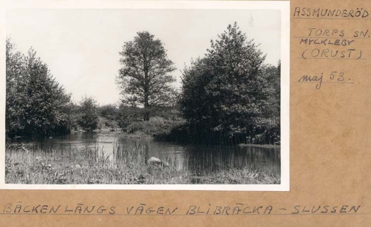 """Noterat på kortet: """"Assmunderöd. Torps Sn. Myckleby (Orust)."""" """"Ån längs vägen Blibräcka - Slussen. ."""" """"Maj 53."""""""