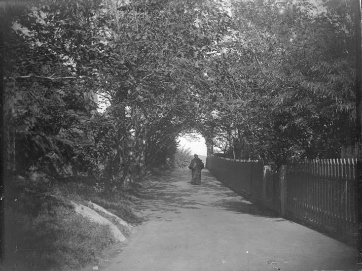 """Enligt text som medföljde bilden: """"Lysekil. Porten 1897."""" ::"""