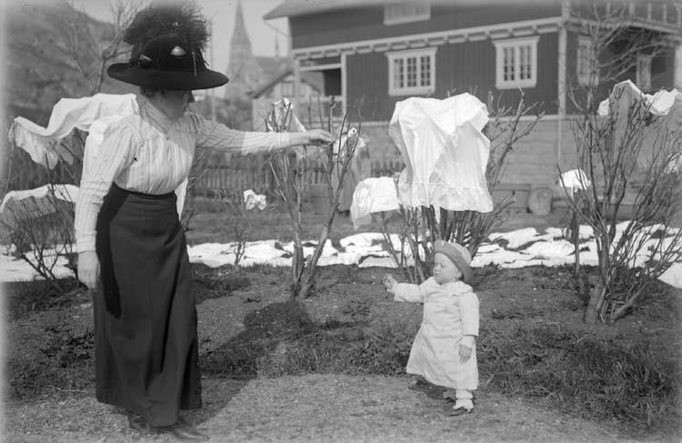 """Enligt text som medföljde bilden: """"1914 Bamse."""" ::"""