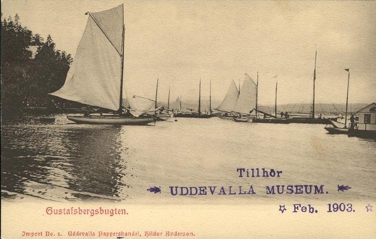 """Tryckt text på vykortets framsida: """"Gustafsbergsbugten."""" ::"""