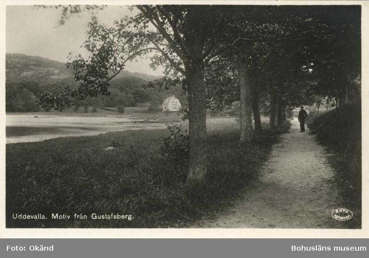 """Tryckt text på vykortets framsida: """"Motiv från Gustafsberg."""""""