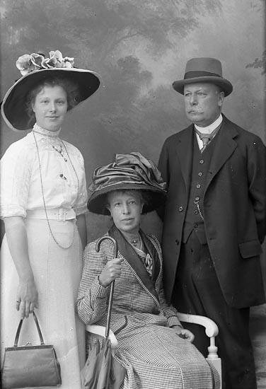 "Enligt fotografens journal Lyckorna 1909-1918: ""Bergstedt, Lyckorna""."