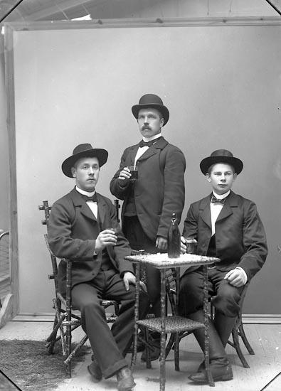 """Enligt fotografens journal nr 1 1904-1908: """"Rydberg, Axel, Berg, Stenungsund""""."""