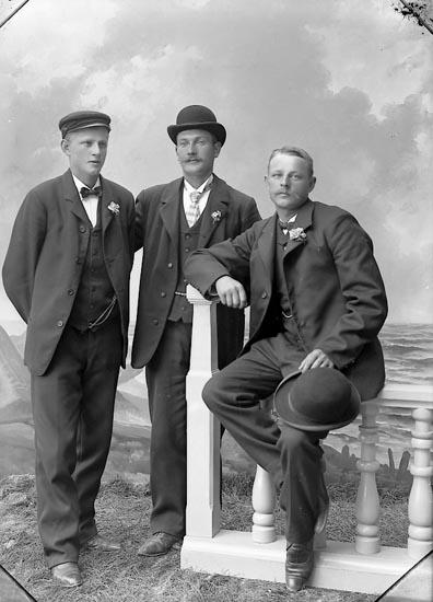 "Enligt fotografens journal nr 1 1904-1908: ""Andersson, Johannes Stenungsund""."