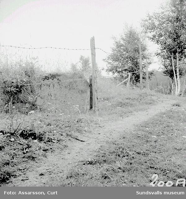 Runstenen i Oxsta by.