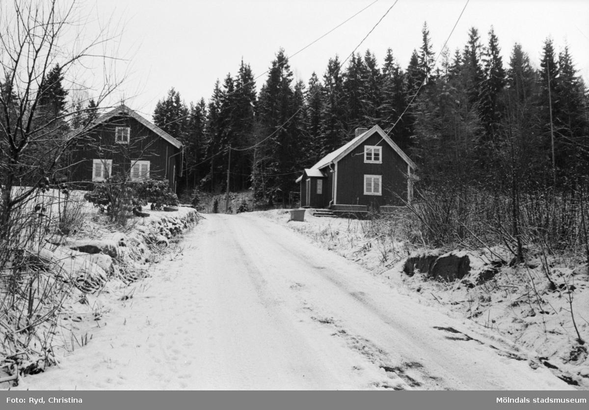 Två hus vid vägen mot Grantjärn, söder om Västra Ingsjön. Hällesåker 1991. Huset till höger är Grantjärnsvägen 14.
