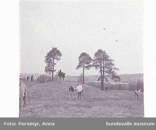 Drakfestival på Högom-gravfältet, i samarbetemed Sundsvall Tidning.