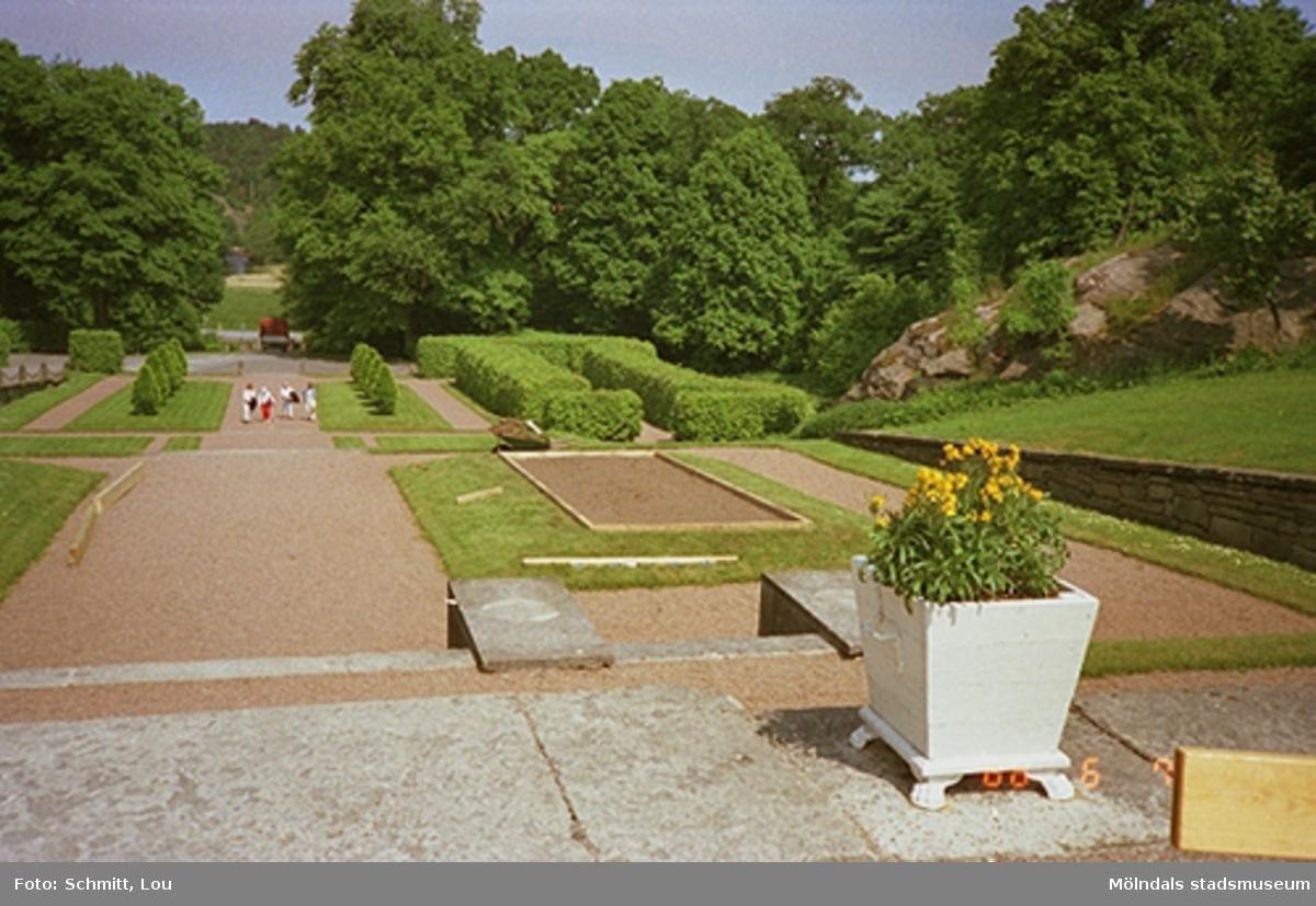 Gunnebo slott. En del av parken.