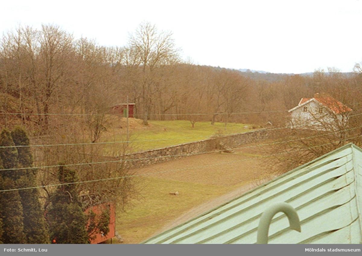 Gunnebo slottspark. I fronten ser man ett grönfärgat tak och längre bort en mur samt ett bostadshus längst till vänster.