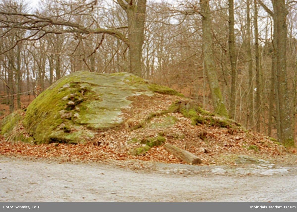 En stor sten med omkringliggande bruna löv och träd, tillhörande Gunnebo slott.