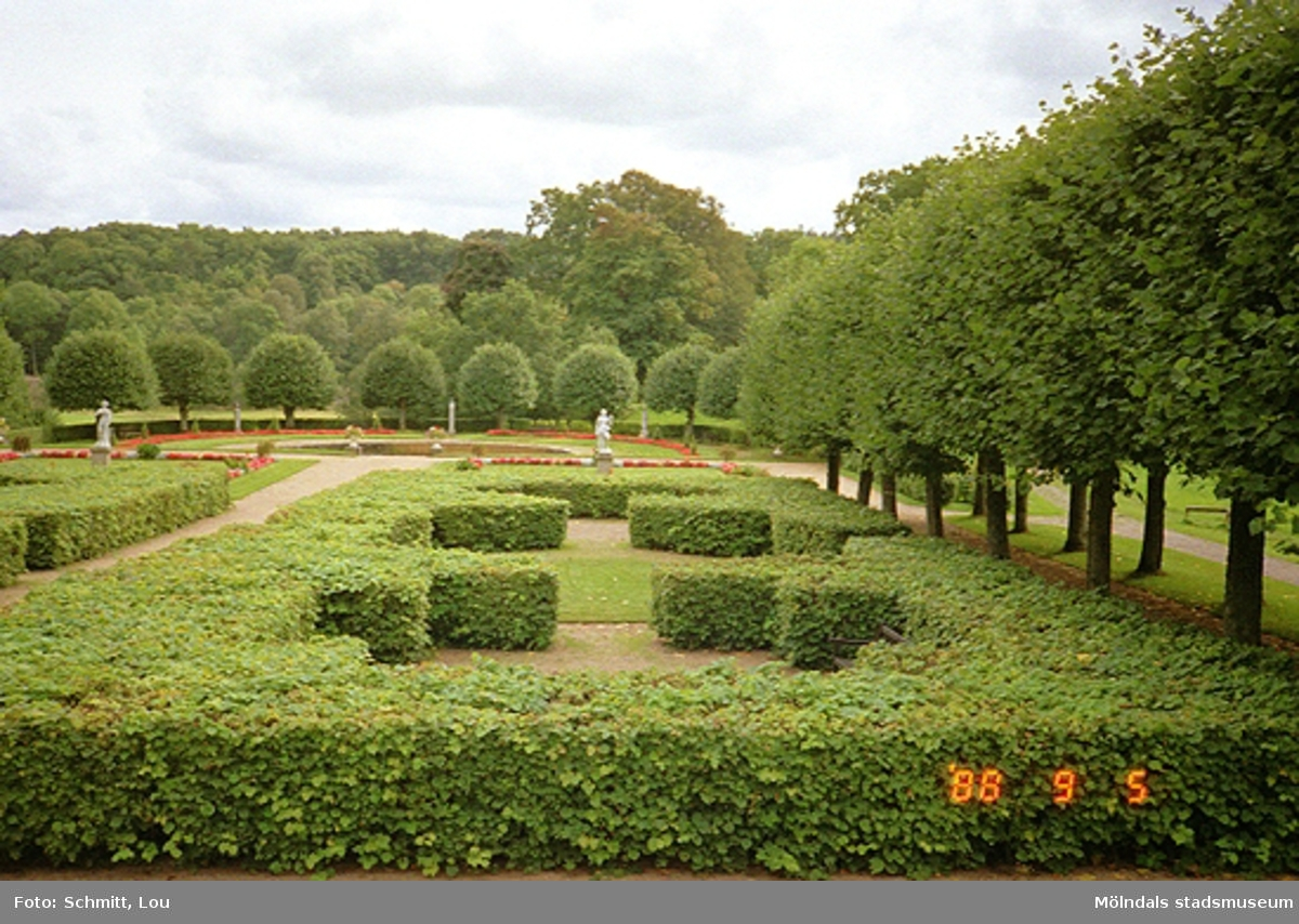 Gunnebo slottspark, söder om slottet.