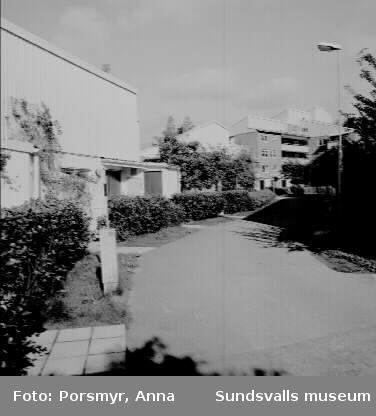Bilder på boendemiljö exteriört, innom bostadsrättsföreningen Champinjonen.Området är uppdelat i 4 gårdar. Gård 1-3 är radhus byggda runt varsitt högre lägenhetshus. Gård 4 är radhus enbart. I området finns också kvarterslokal med solarium och bastu.