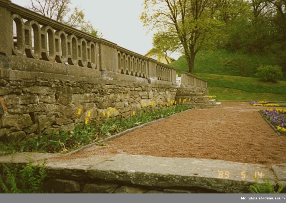 Bilder från maj -89. Gunnebo slott. En bild på stenmuren och precis utanför är det en blomsterrabatt planterad. Man ser också en bit av skogen och andra blomsterodlingar.