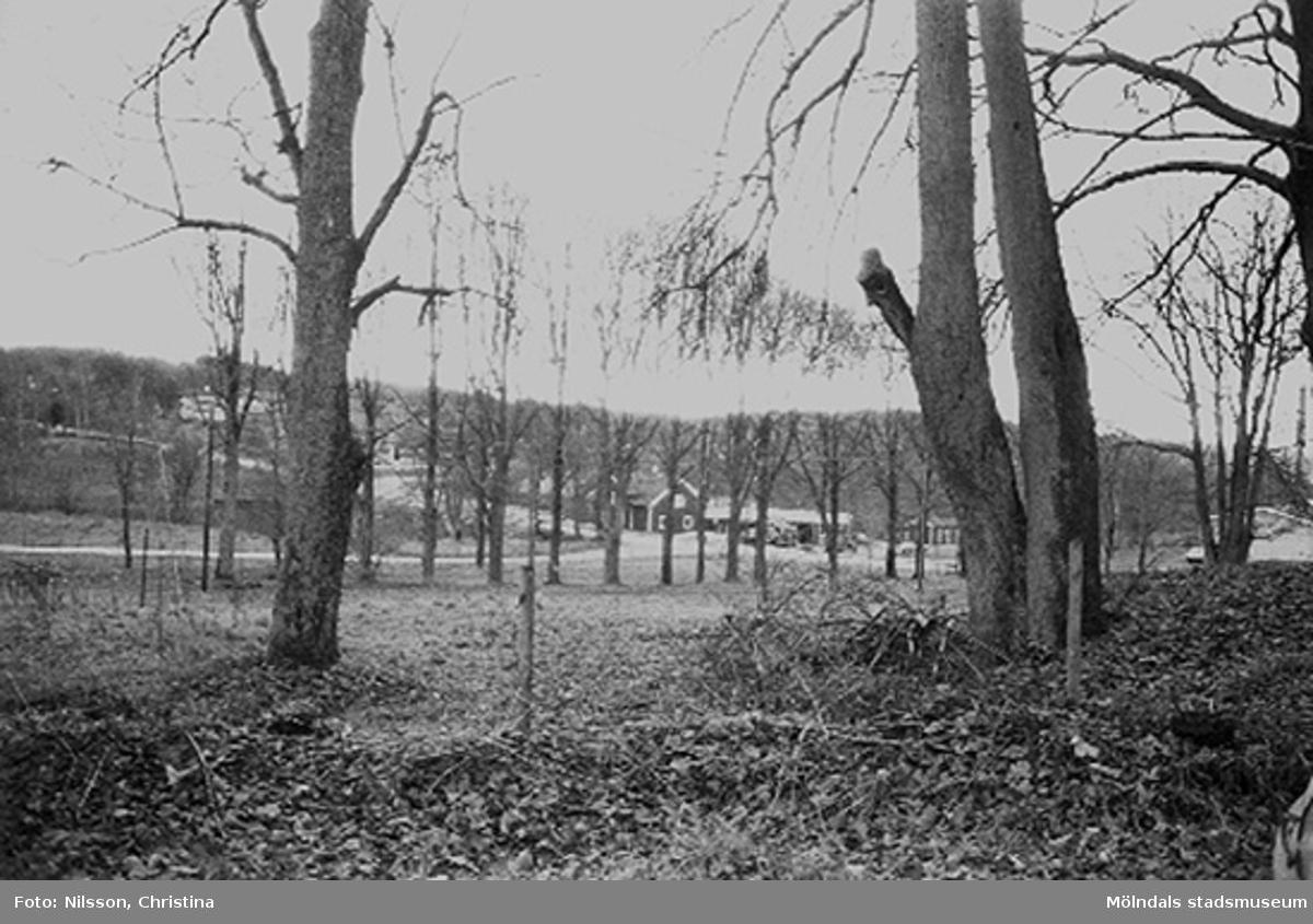Området vid Werners fabriker, Annestorp, Lindome hösten 1994.