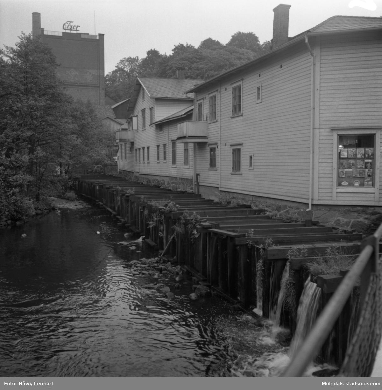 Mölndalsån, uppströms Forsebron. Mölndal, 1/6 1961.