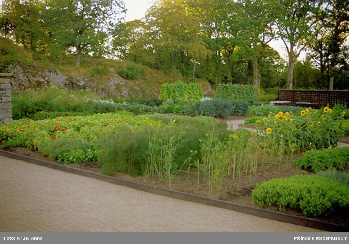 Köksträdgård vid Gunnebo slott.